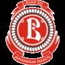 HC Vityaz logo